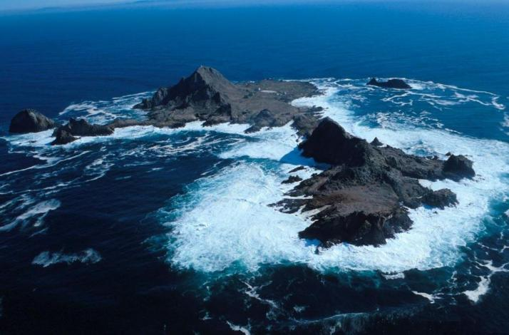 Scuba Dive the Farallon Islands: In San Francisco, California (1)