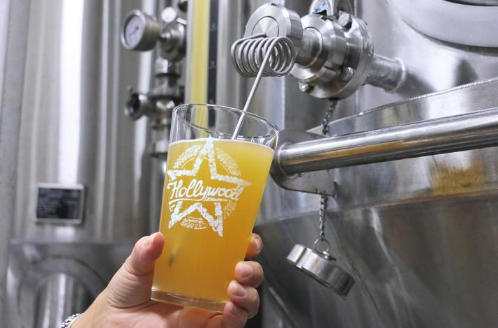Brewery Tour at Hollywood Brewing Co.: In Hollywood, Florida